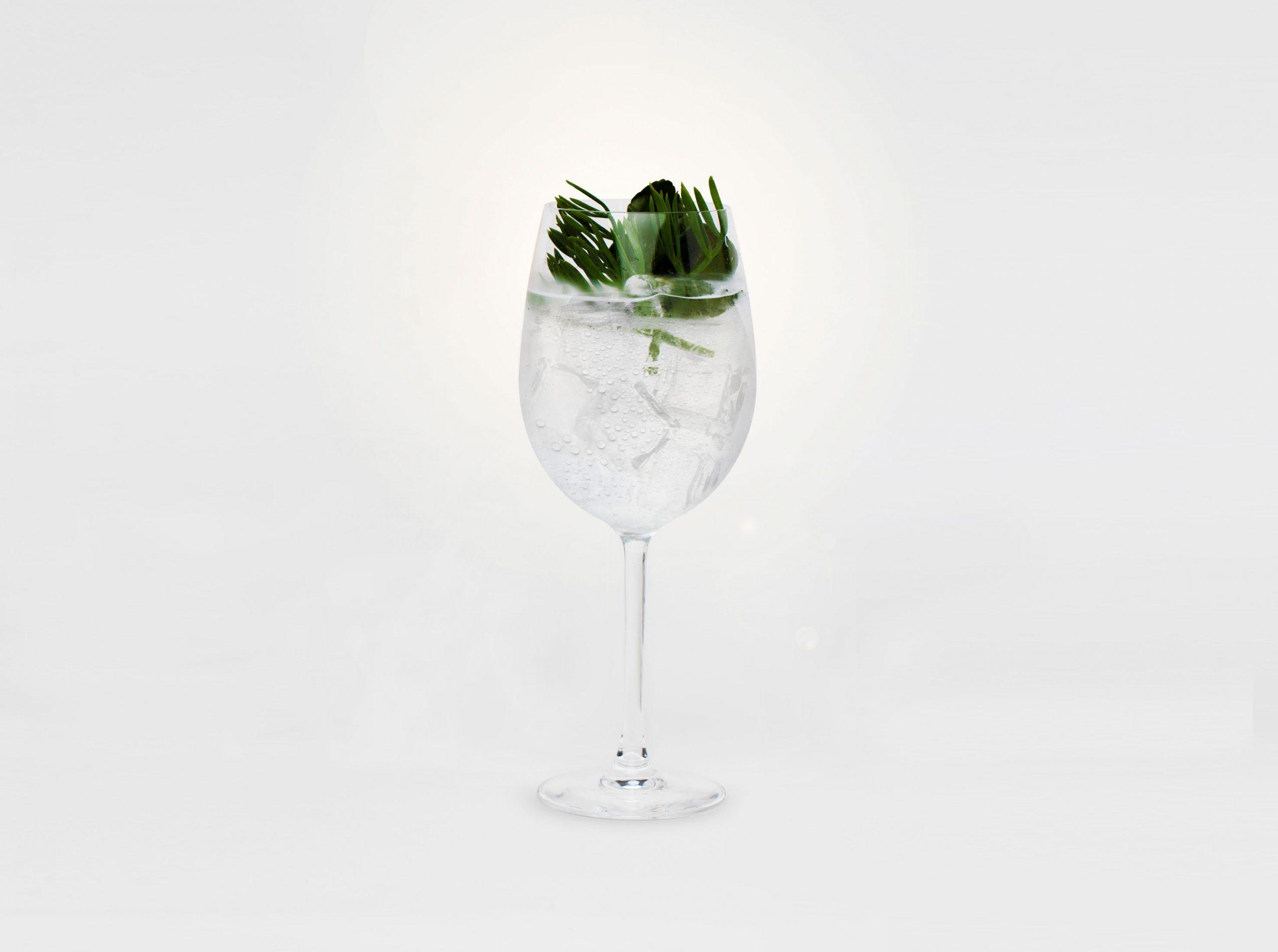 Cocktail Hinojo Marino